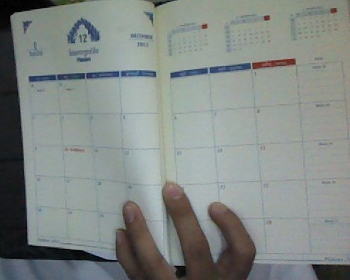 Angkor Diary 2013 (2)